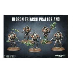 Necron Triarch Praetorians...